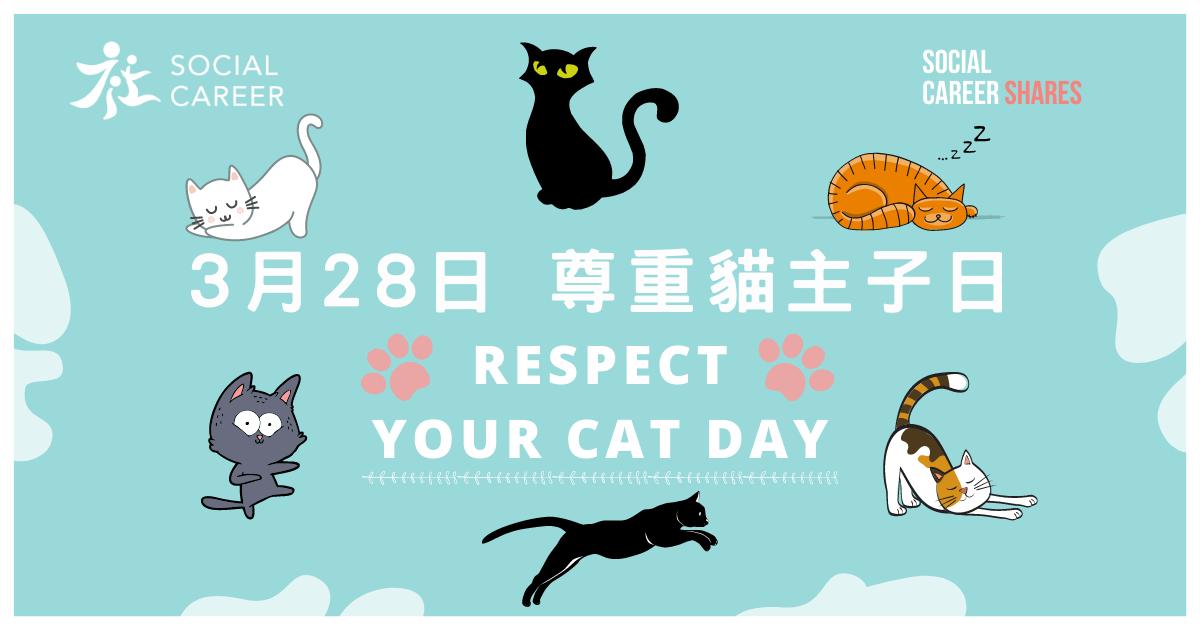 328 尊重貓主子日 Respect Your Cat Day|卡通貓集體回憶